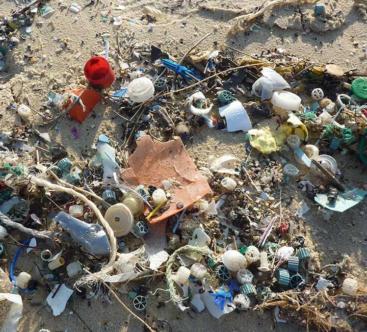 Over 80% of marine pollution comes from land-based activities