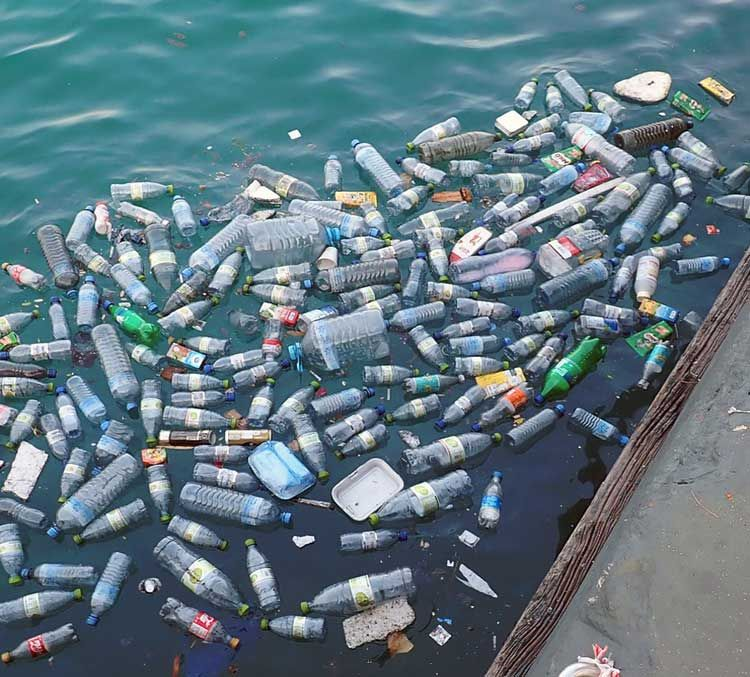 You're it! Plastic pollution tag takes off